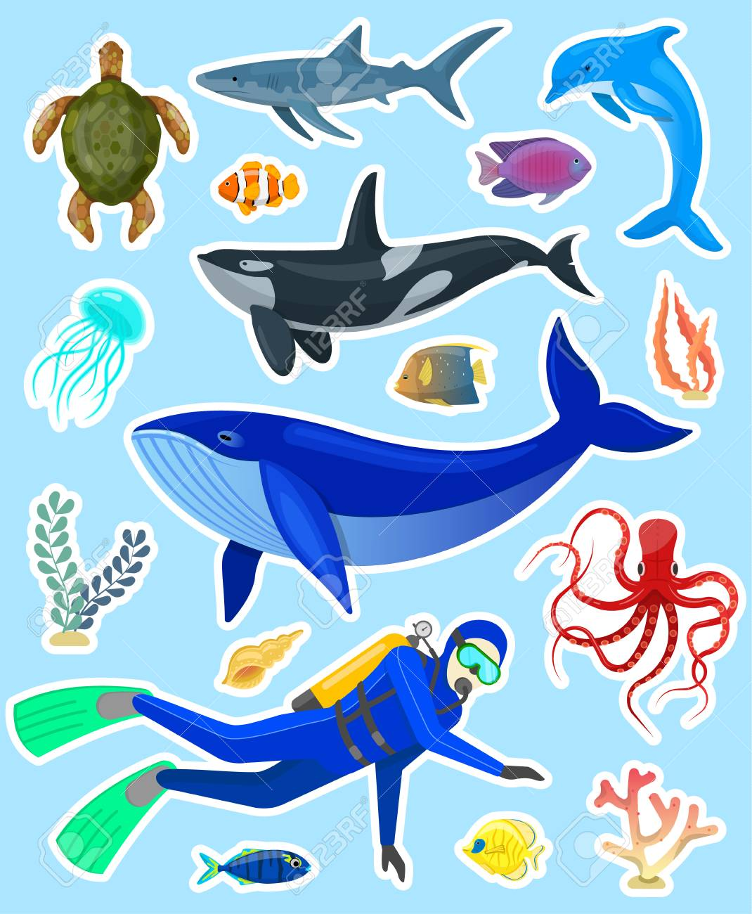 Image of: Book Set Of Stickers With Ocean Animals And Divers On Blue Backgroundvector Illustration Stockfoto 123rf Set Of Stickers With Ocean Animals And Divers On Blue Background