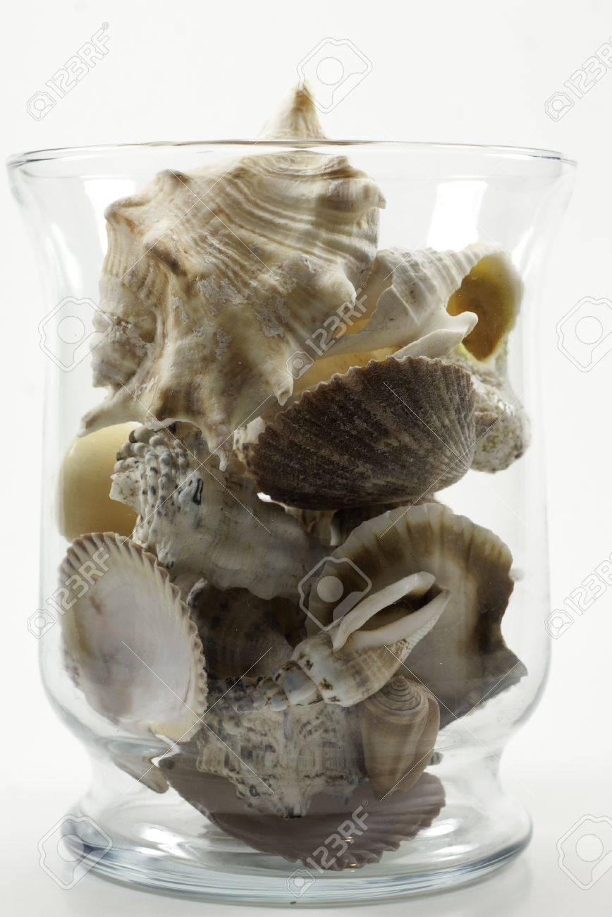 Clear glass jar or vase filled with sea shells stock photo clear glass jar or vase filled with sea shells stock photo 12612410 reviewsmspy