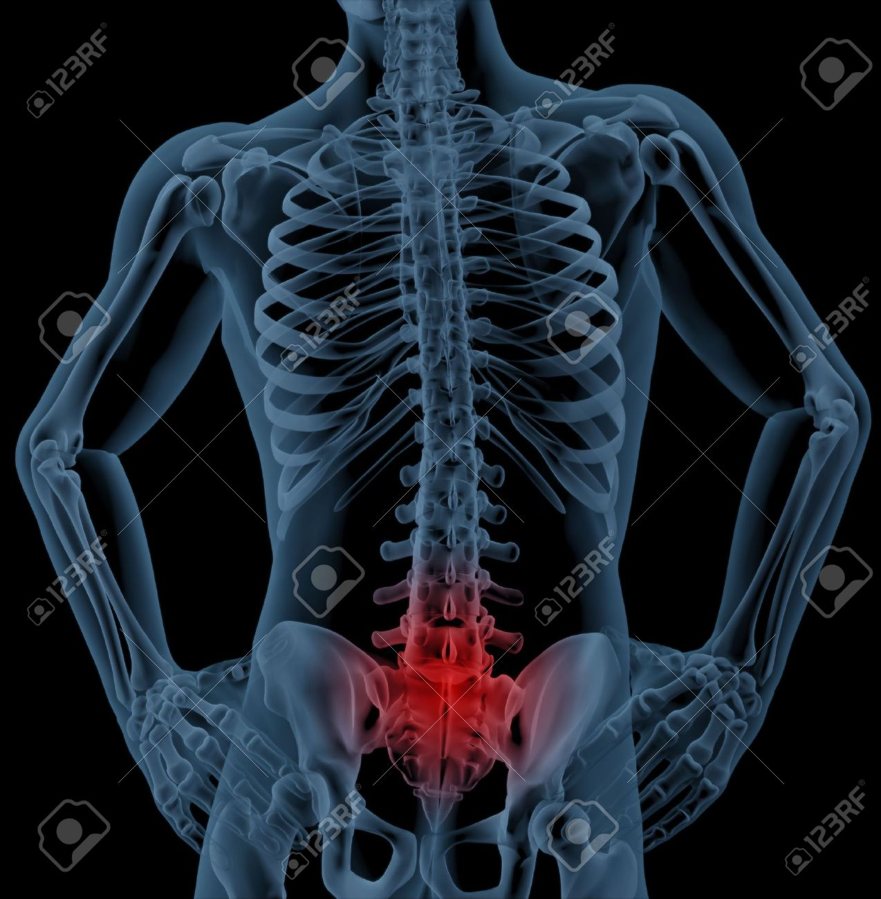 3D render of a skeleton highlighting pain in the back Stock Photo - 7825442