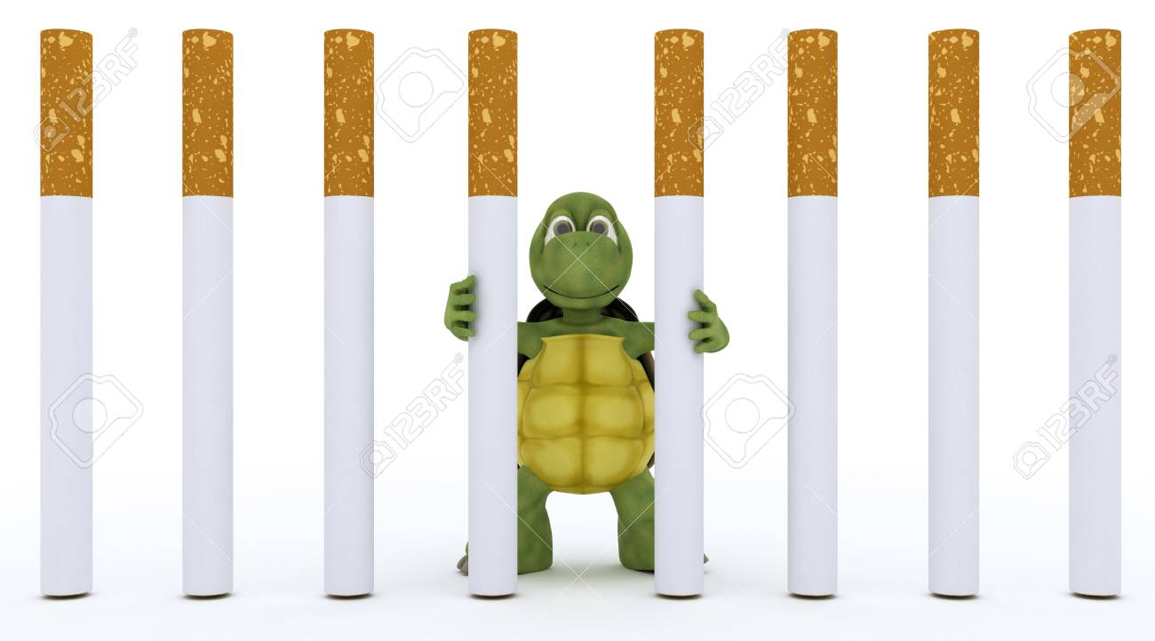 3D render of a tortoise escaping cigarette prison Stock Photo - 17621835