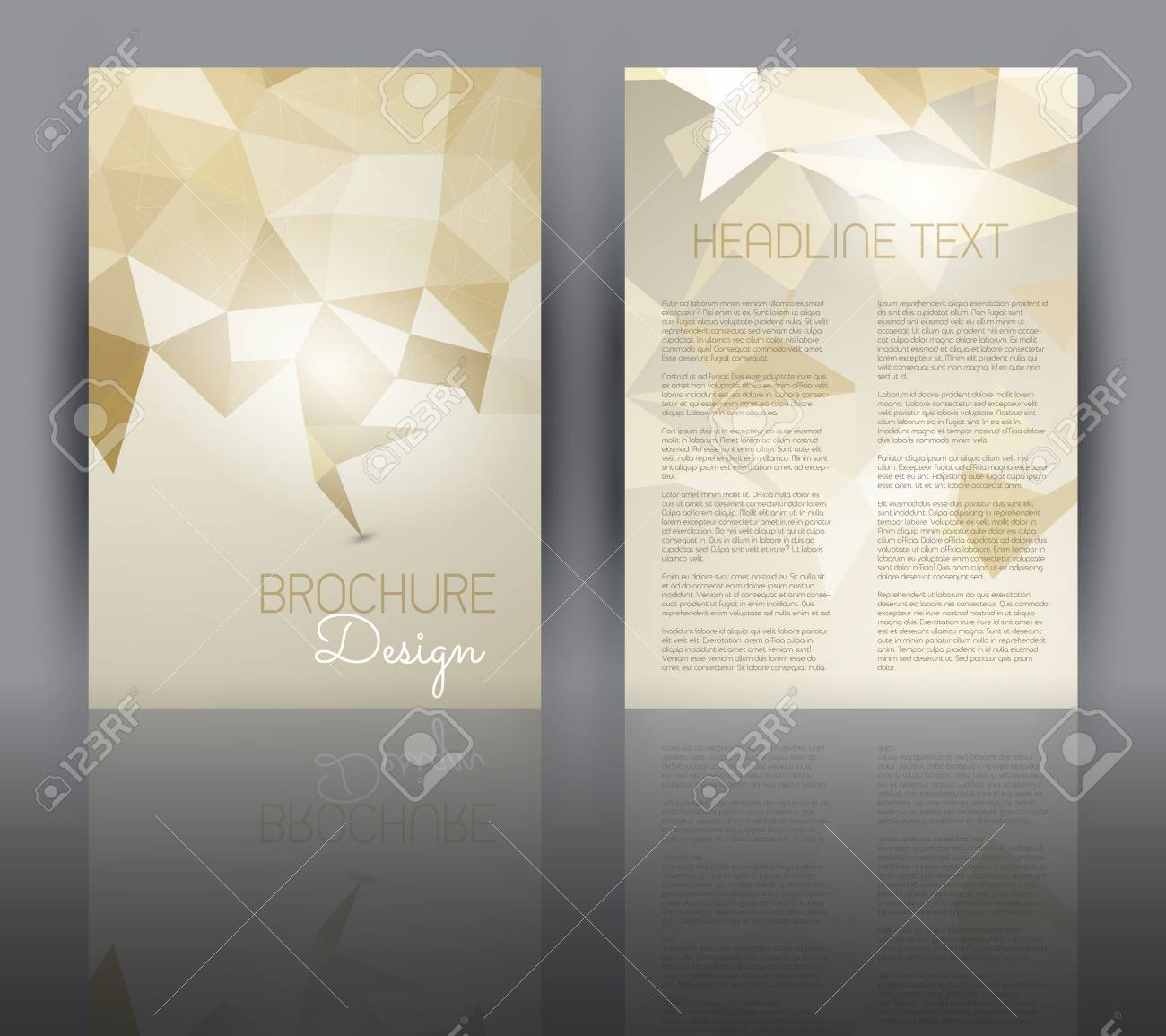 Double Sided Flyer Template With A Low Poly Design Stock Photo ...
