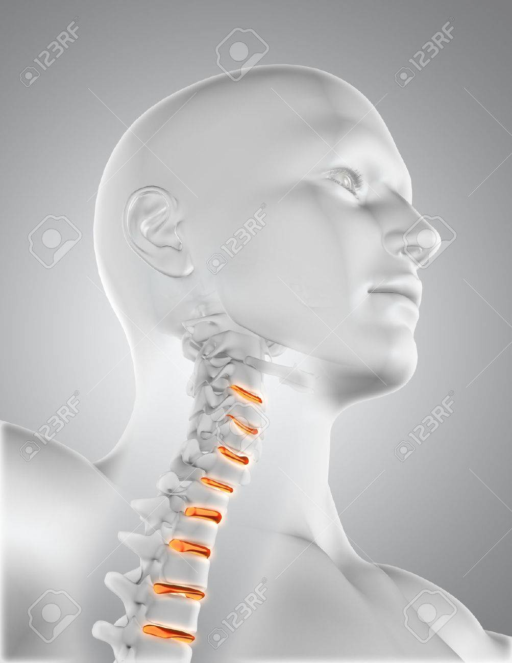 3D Rinden De Una Figura Masculina Médica Con El Esqueleto En La ...