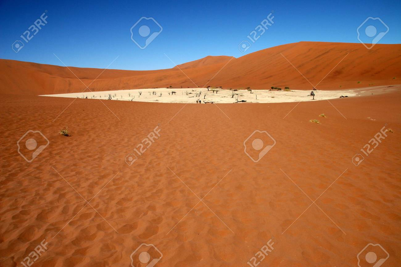 Dead acacia trees at Dead Vlei, Namib desert, Sossusvlei, Namibia Stock Photo - 3330122