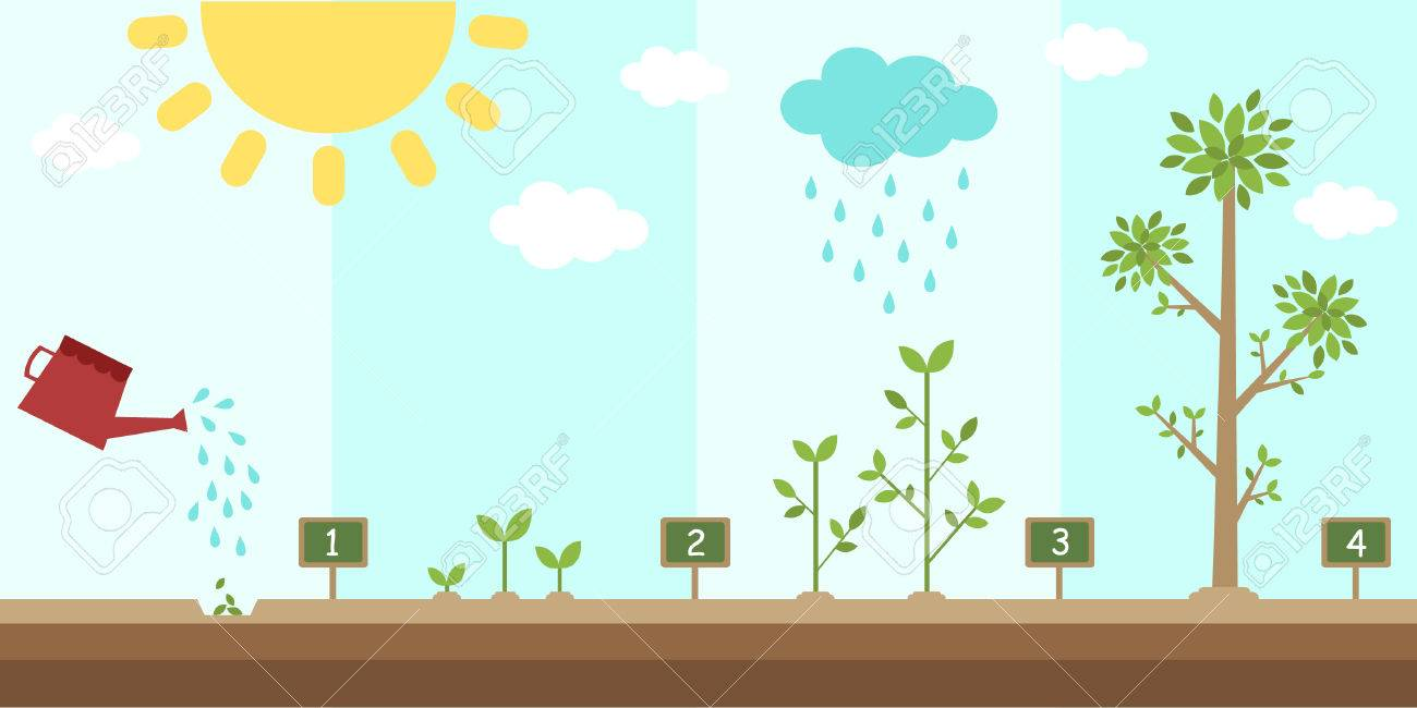 flat background of planting tree process - 55097774