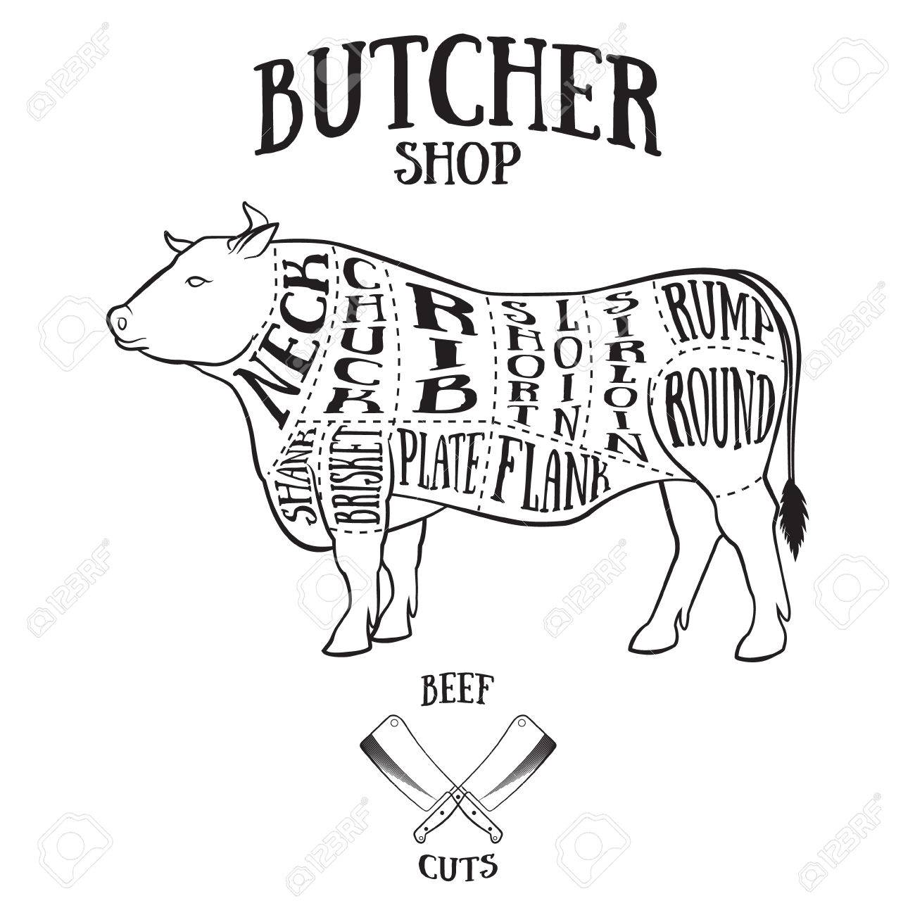 Butcher cuts scheme of beef.Hand-drawn illustration of vintage style - 41695395