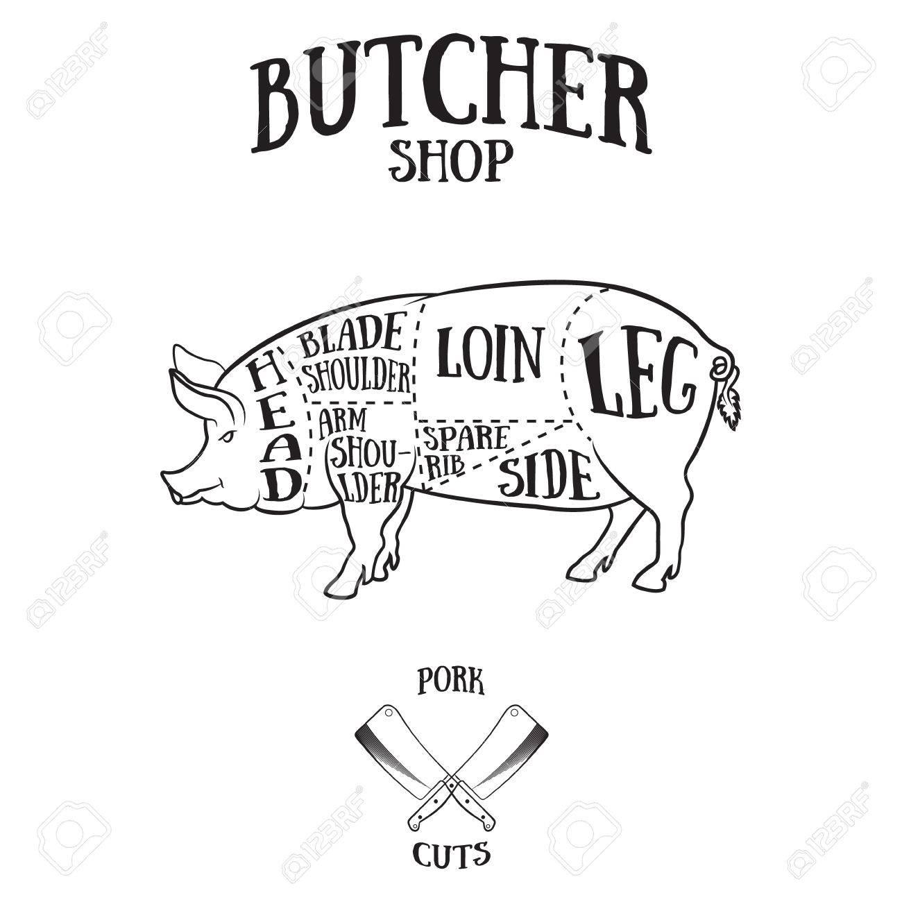 Butcher cuts scheme of pork.Hand-drawn illustration of vintage style - 41695484