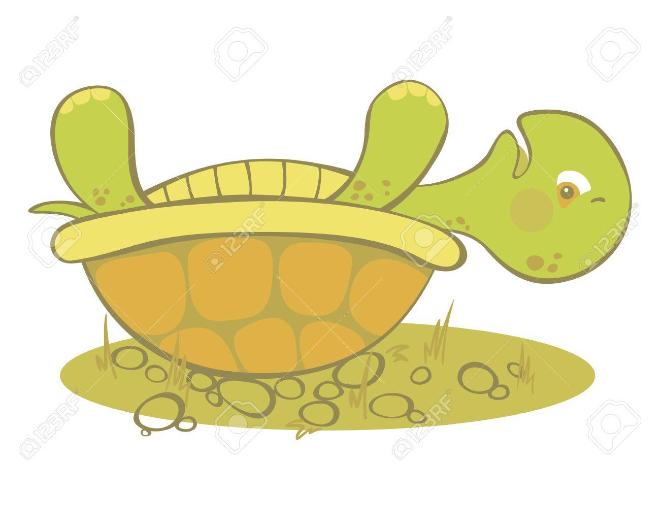 Cute turtle stuck on it's shell. - 14288655