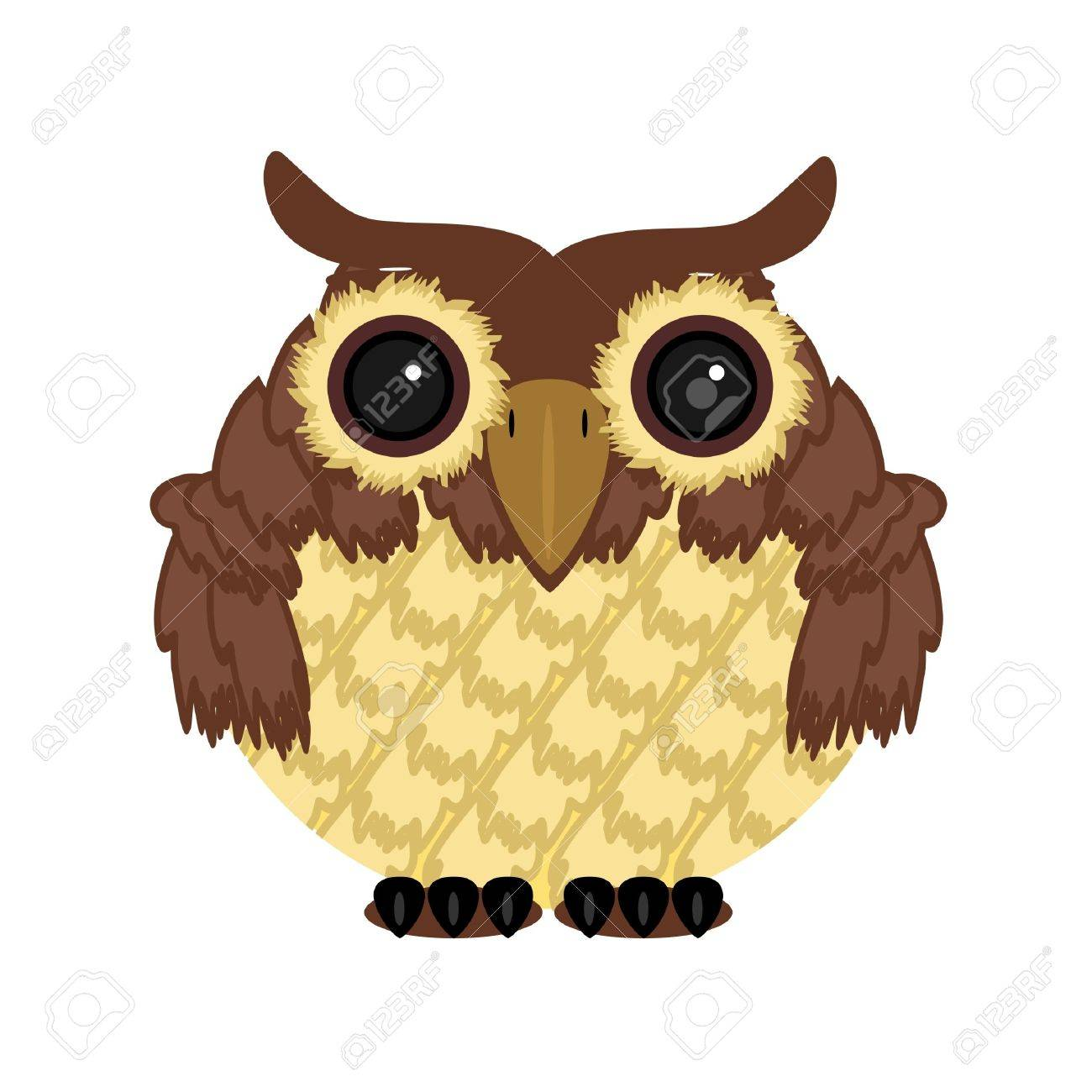 owl on white background Stock Vector - 11660882