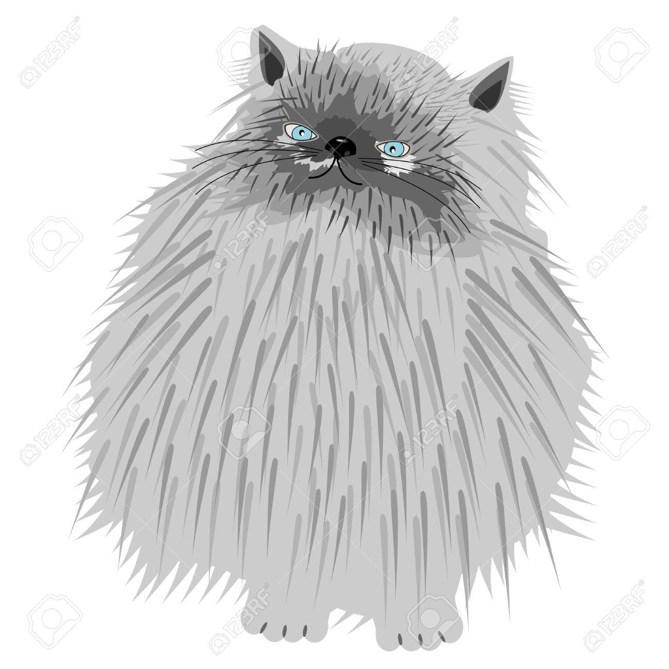 persian cat on white background Stock Vector - 12364173
