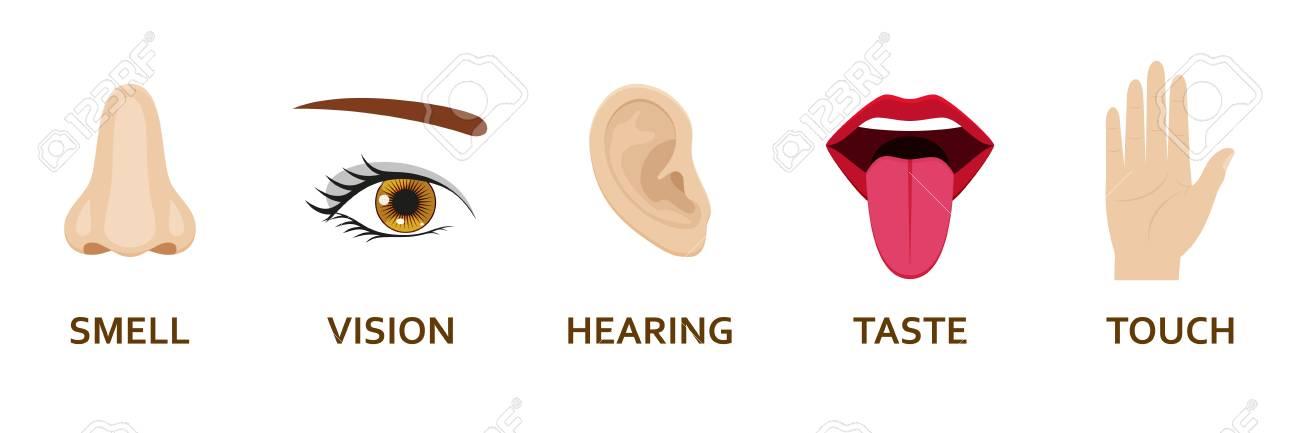 Five human senses icons set. Cartoon design nose, eye, hand, ear and mouth. Vector illustration. - 108509751