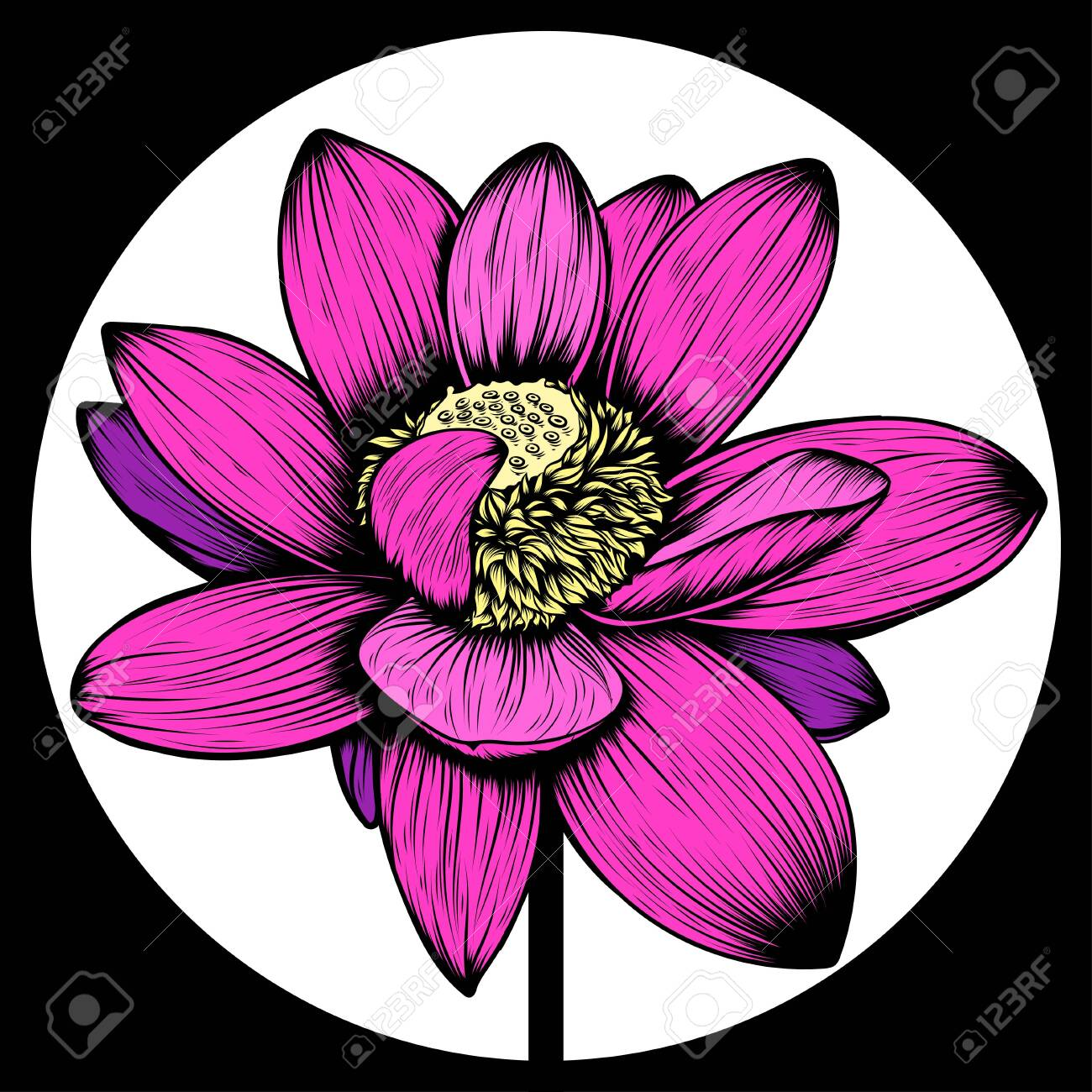 Hand Drawn Lotus Flower T Shirt Tattoo Design Element Bouquet Royalty Free Cliparts Vectors And Stock Illustration Image 137329188