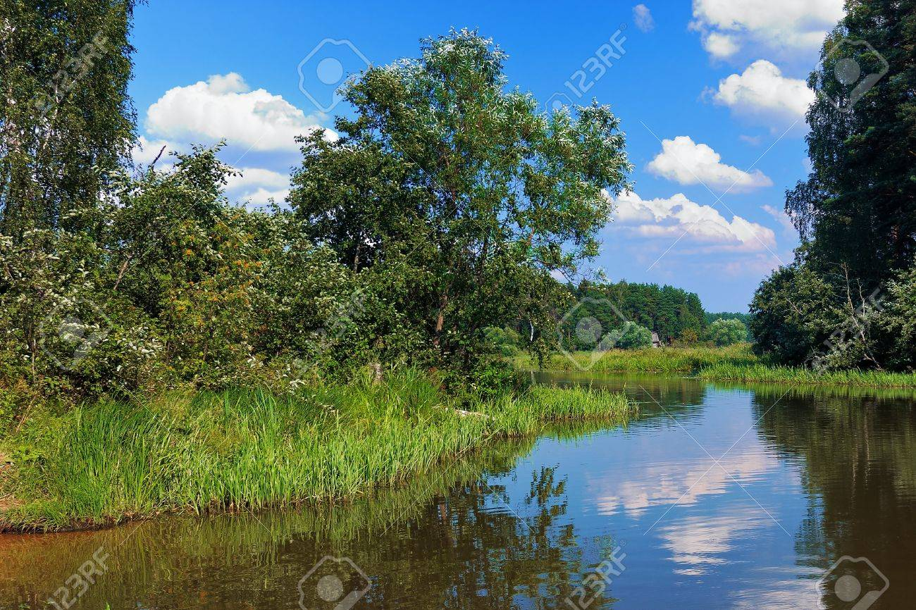 Backwater Of The Volga River In The Summer Russia Stock Photo - The volga river