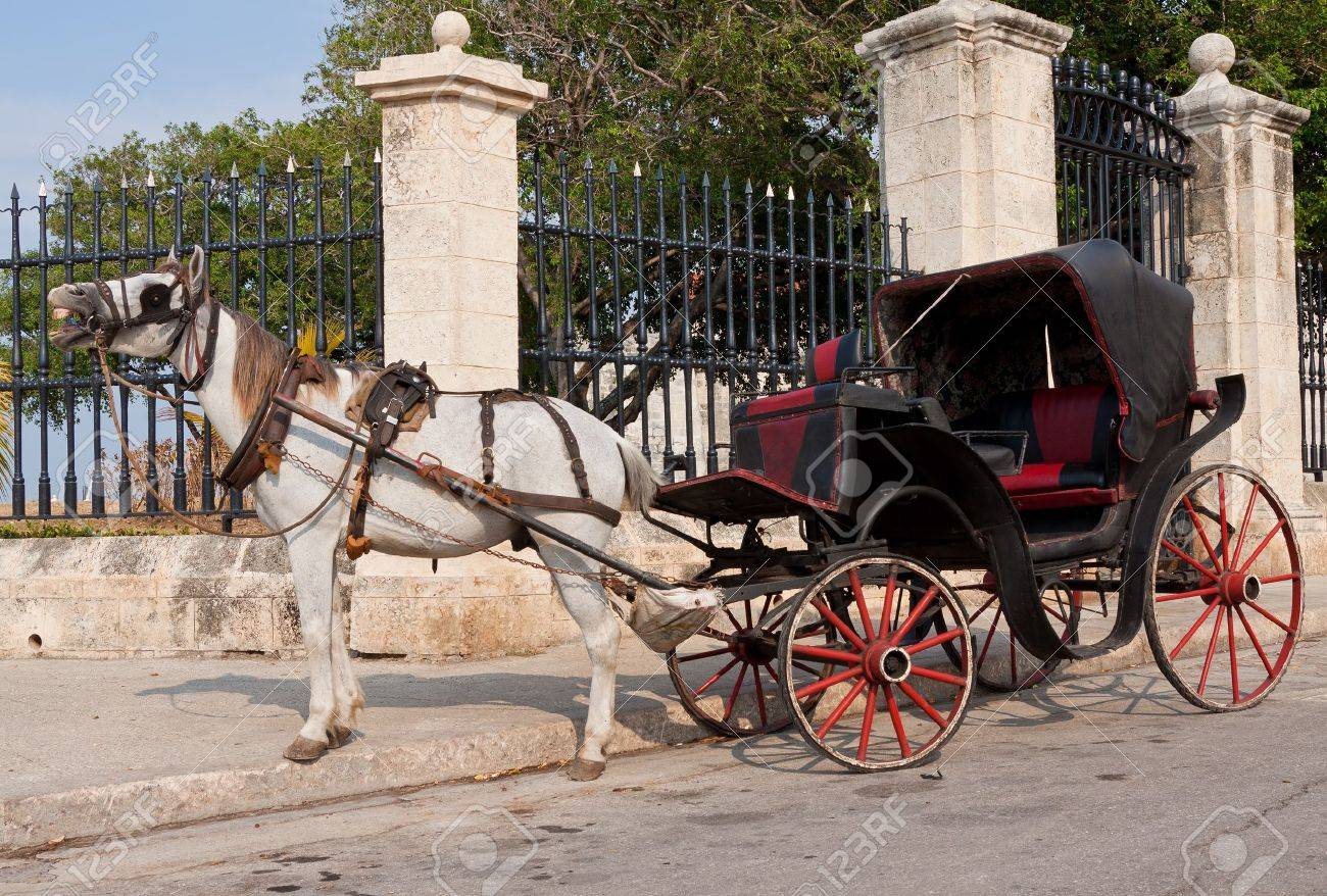 Horse cart waiting for tourists in Old Havana Stock Photo - 10453401