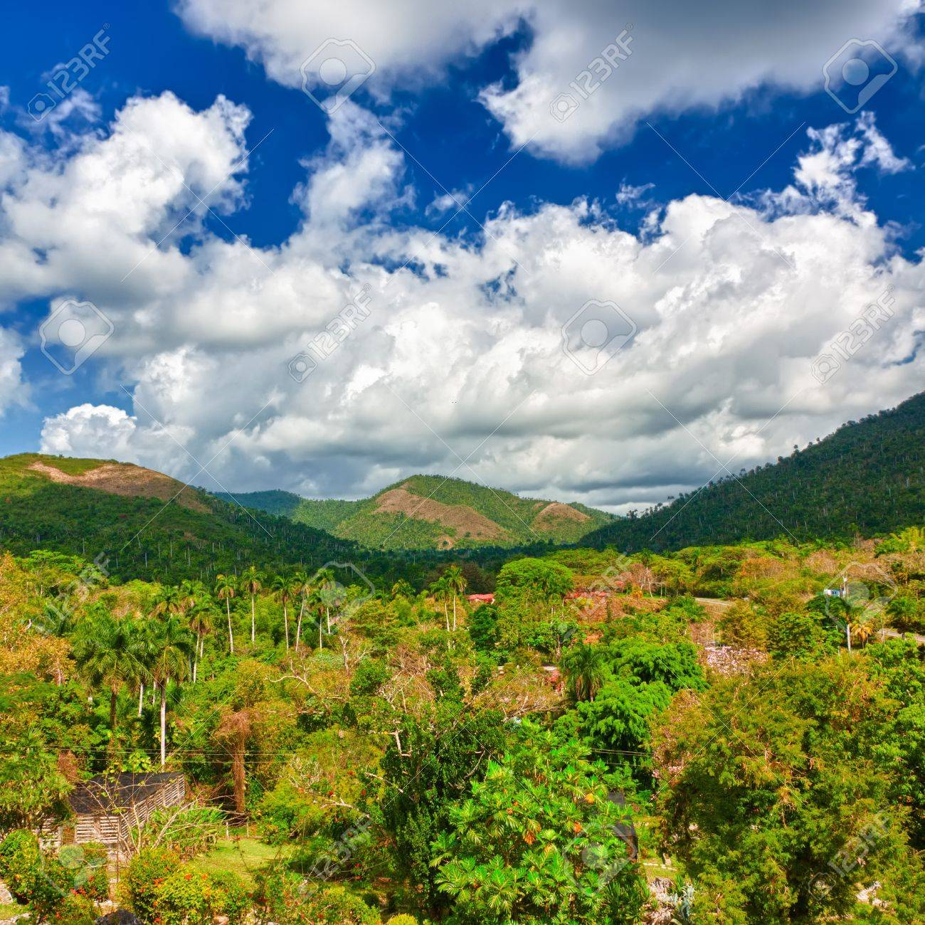 The mountains of Pinar del Rio in Cuba, a natural touristic attraction and a worlwide known tobacco growing area Stock Photo - 13126601