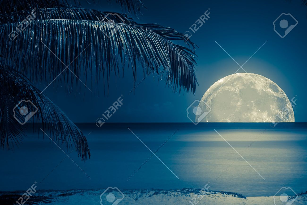 Beautiful full moon reflected on the calm water of a tropical beach (toned in blue) - 13971811