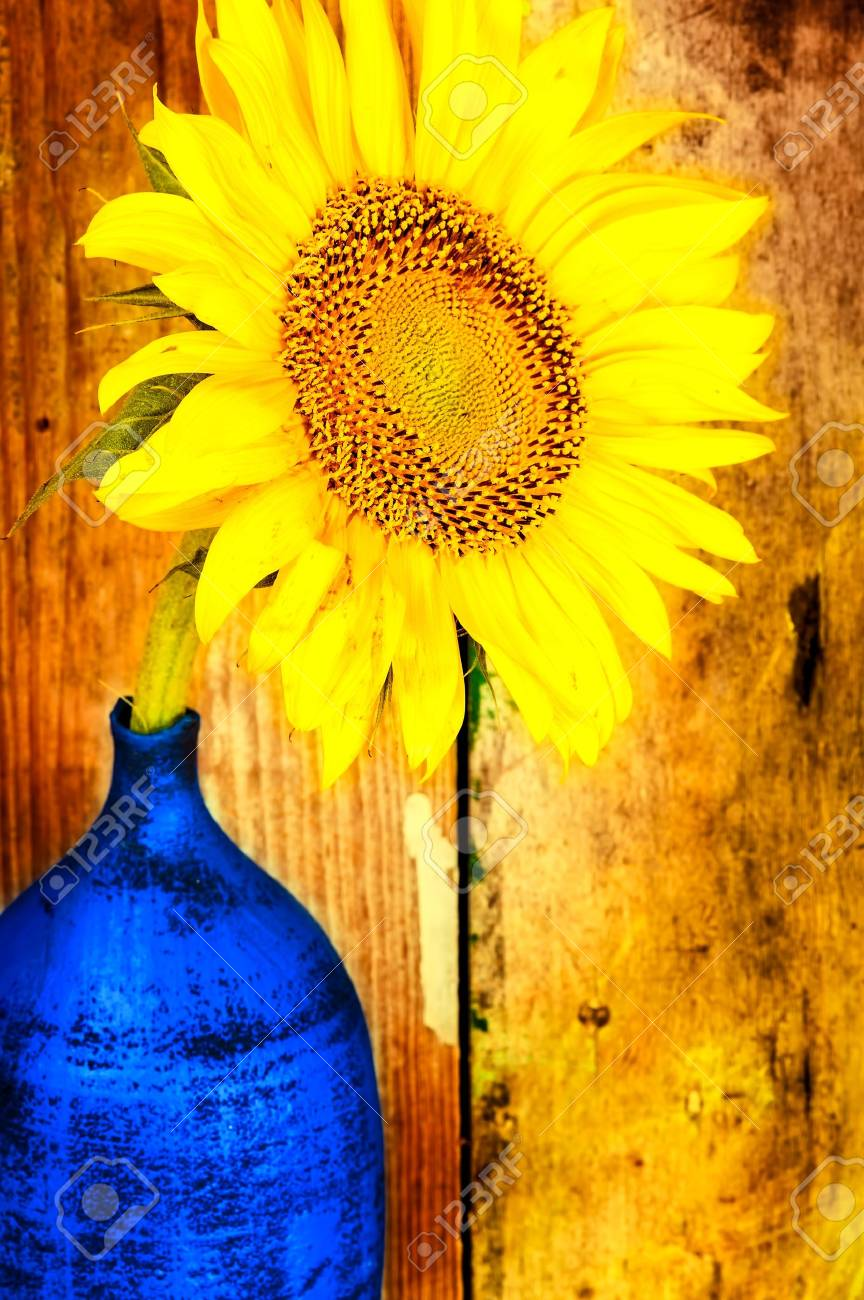 Bright yellow sunflower on a blue vase with an old woods background Stock Photo - 18268130