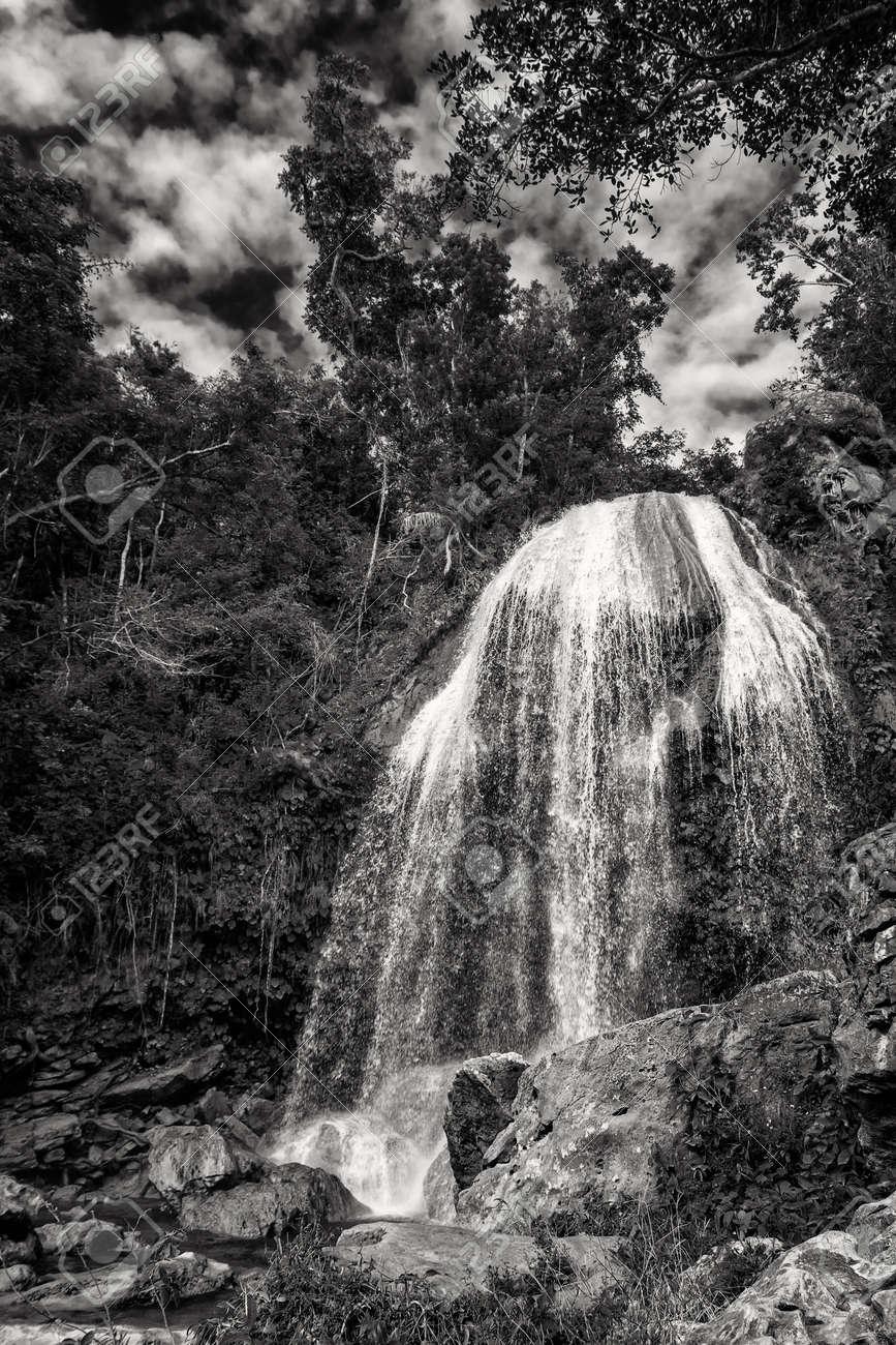 The Soroa waterfall among lush tropical vegetation in Cuba. Black and white image - 170651591