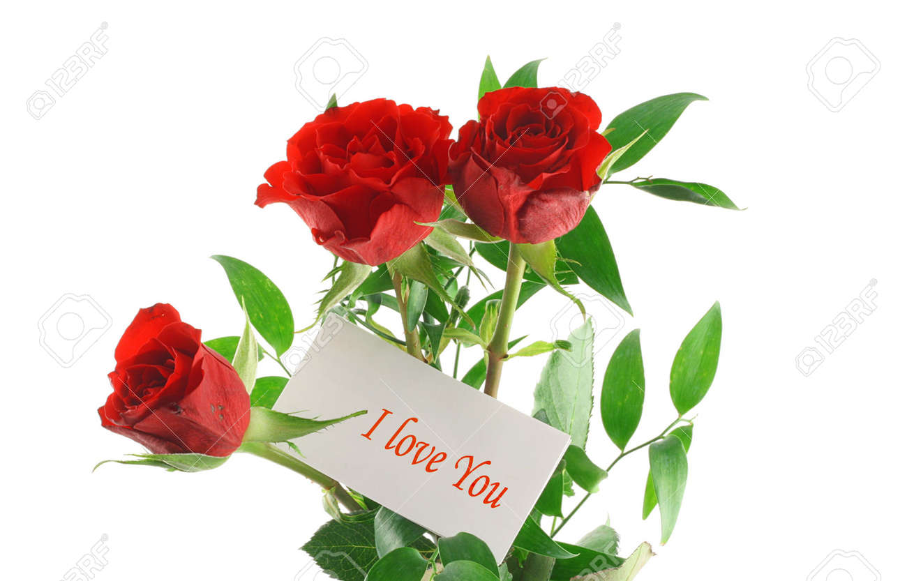 Three Red Roses With I Love You Message Stock Photo Picture And