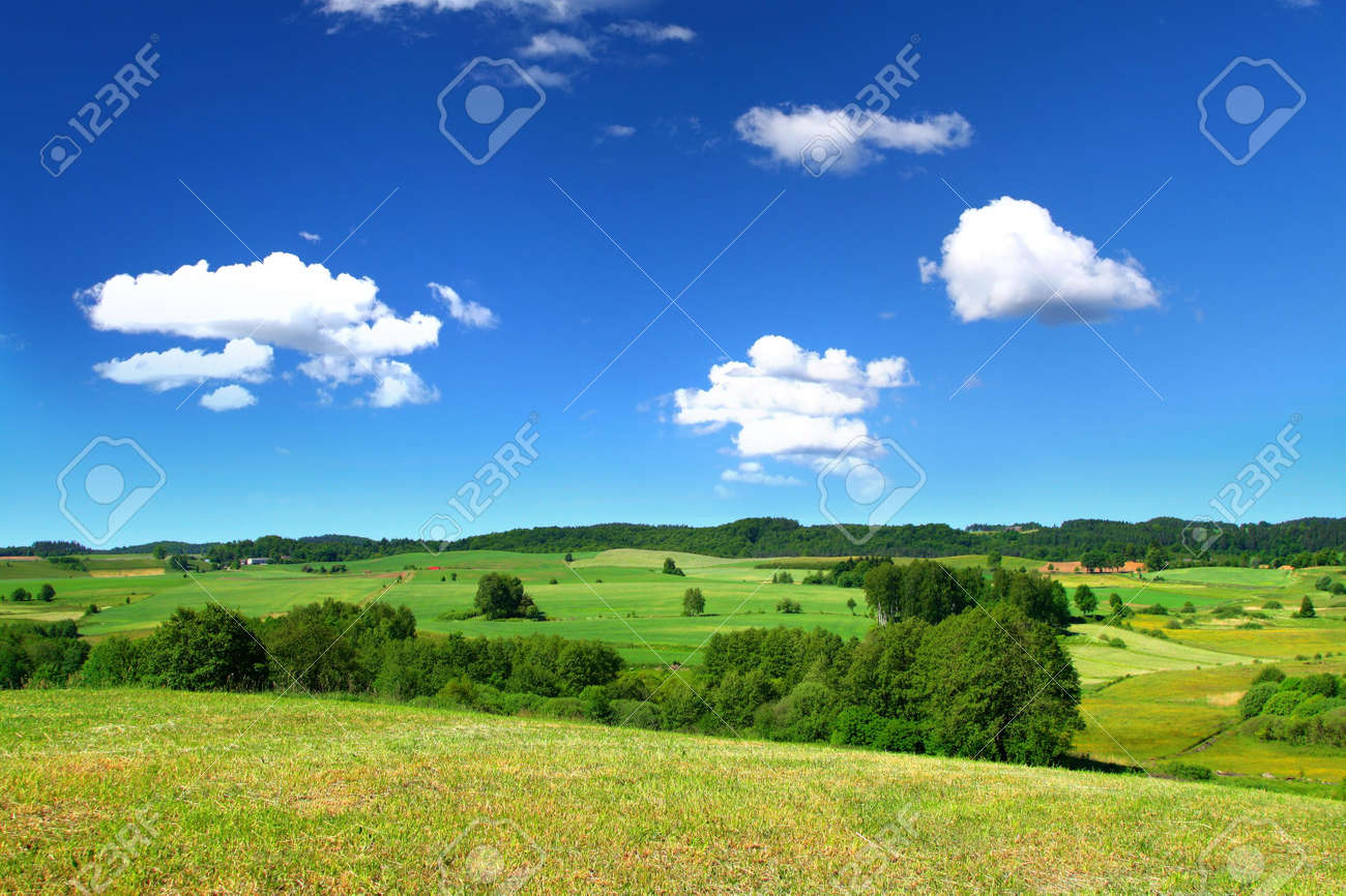 summer landscape with cumulus clouds above Stock Photo - 3521625