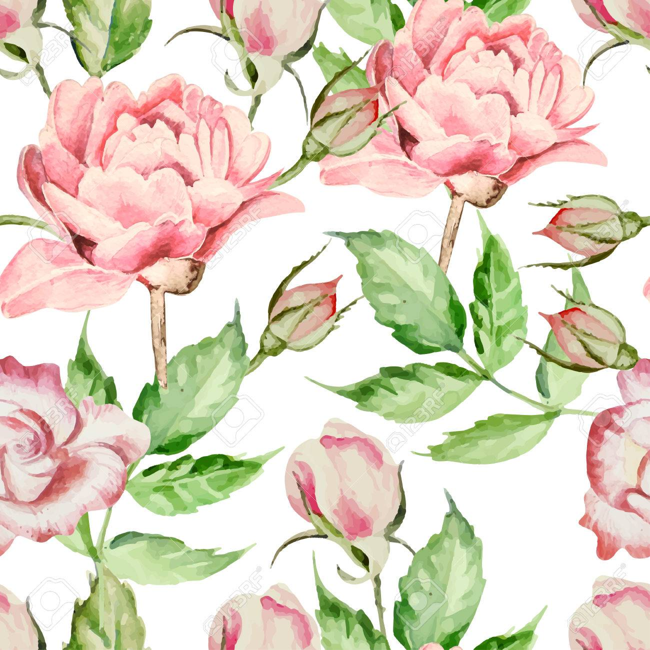 Seamless Pattern With Watercolor Flowers. Rose And Peony. Vector. Hand  Drawn. Stock