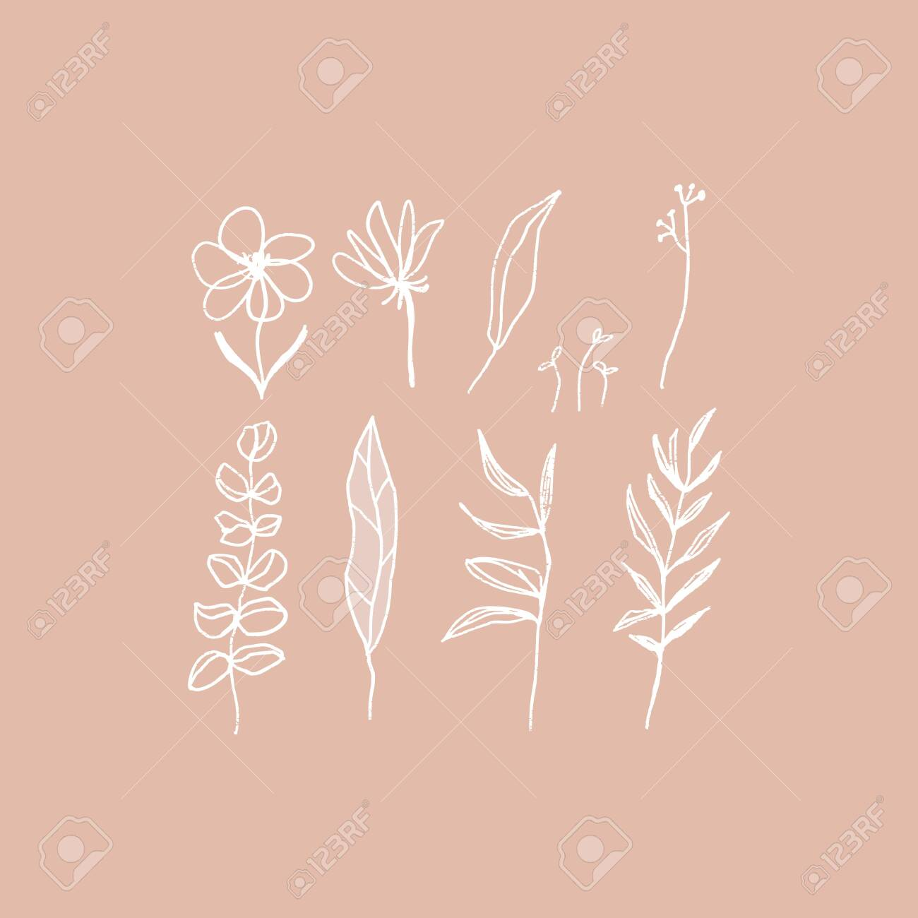 Hand Drawn Aesthetic Floral Elements Set In White And Pink Cozy Royalty Free Cliparts Vectors And Stock Illustration Image 126269319