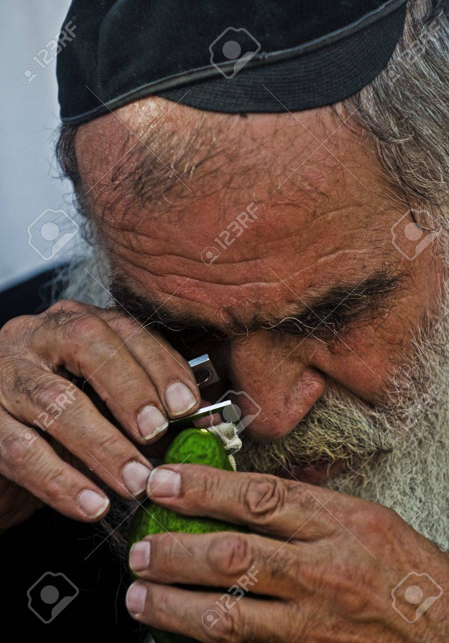 JERUSALEM - OCTOBER 10 2011 : An ultra-orthodox Jewish man inspects an Etrog Stock Photo - 10839150