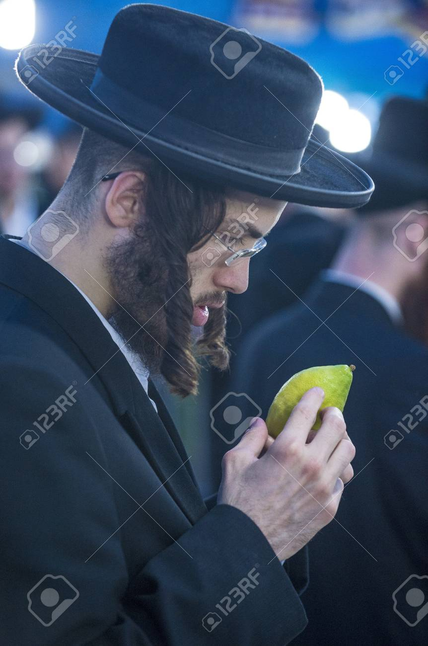 JERUSALEM - SEP 28 : An ultra-orthodox Jewish man inspects an Etrog in the Four spesies market in Jerusalem Israel on September 28 2012 , Etrog is one of the Four spesies used during the celebration of Sukot Stock Photo - 16497172