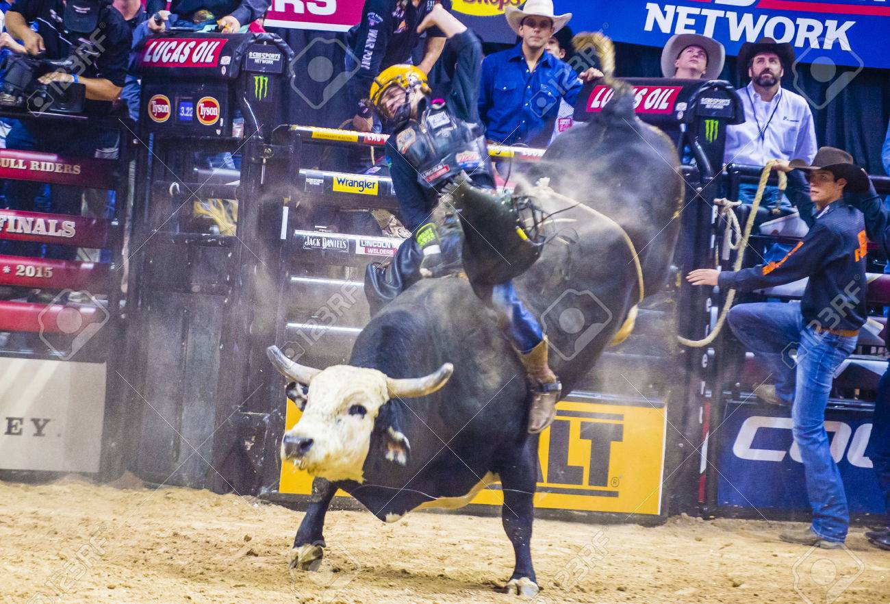 las vegas - oct 24 : cowboy participating in the pbr bull riding