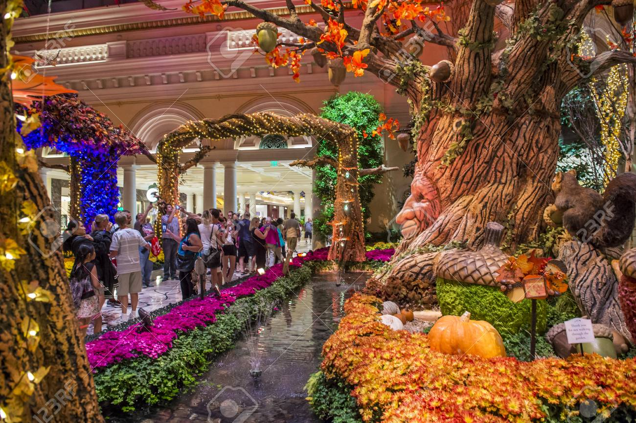 LAS VEGAS - OCT 05 : Fall Season In Bellagio Hotel Conservatory ...