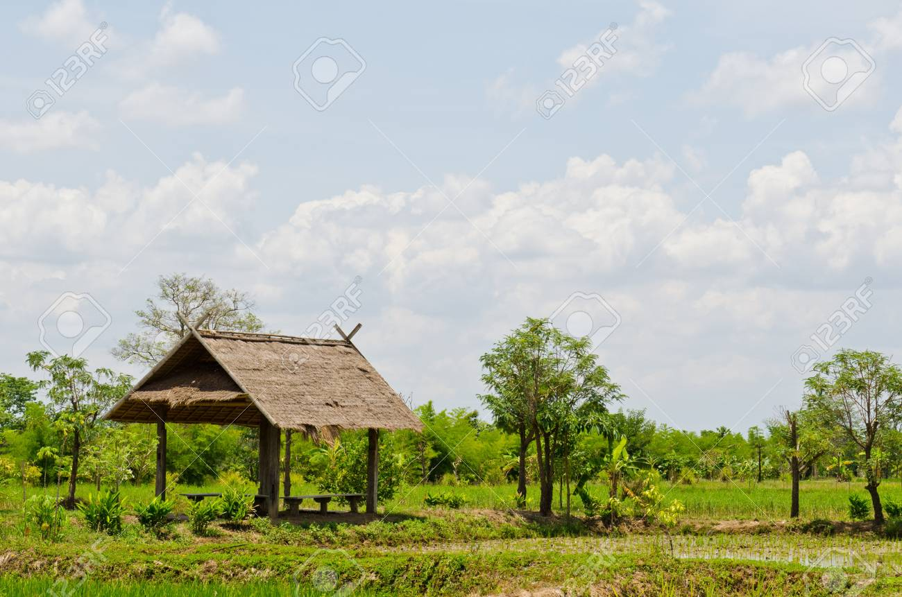 Landscape of countryside, Thailand. Stock Photo - 13293004