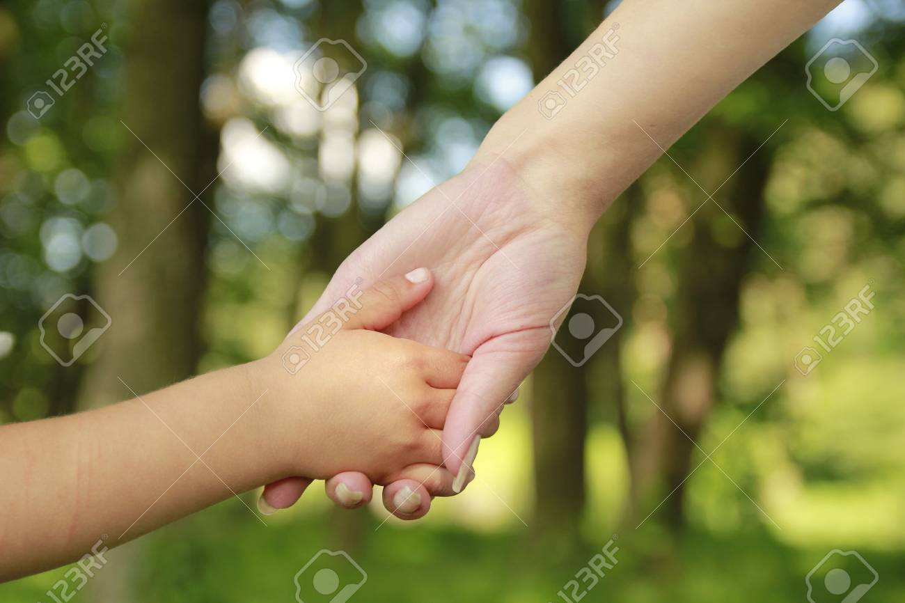 a parent holds the hand of a small child Stock Photo - 22160564