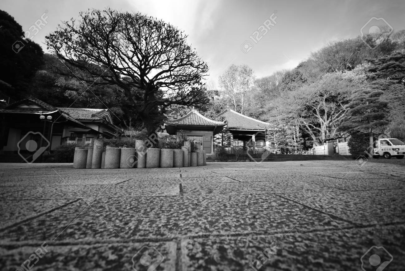 Japanese garden in autumn at yokohama japan in black and white stock photo 44425262
