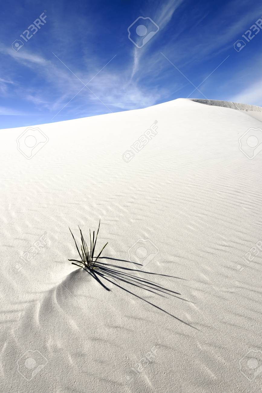White Sands National Monument, New Mexico, USA. Stock Photo - 17273870