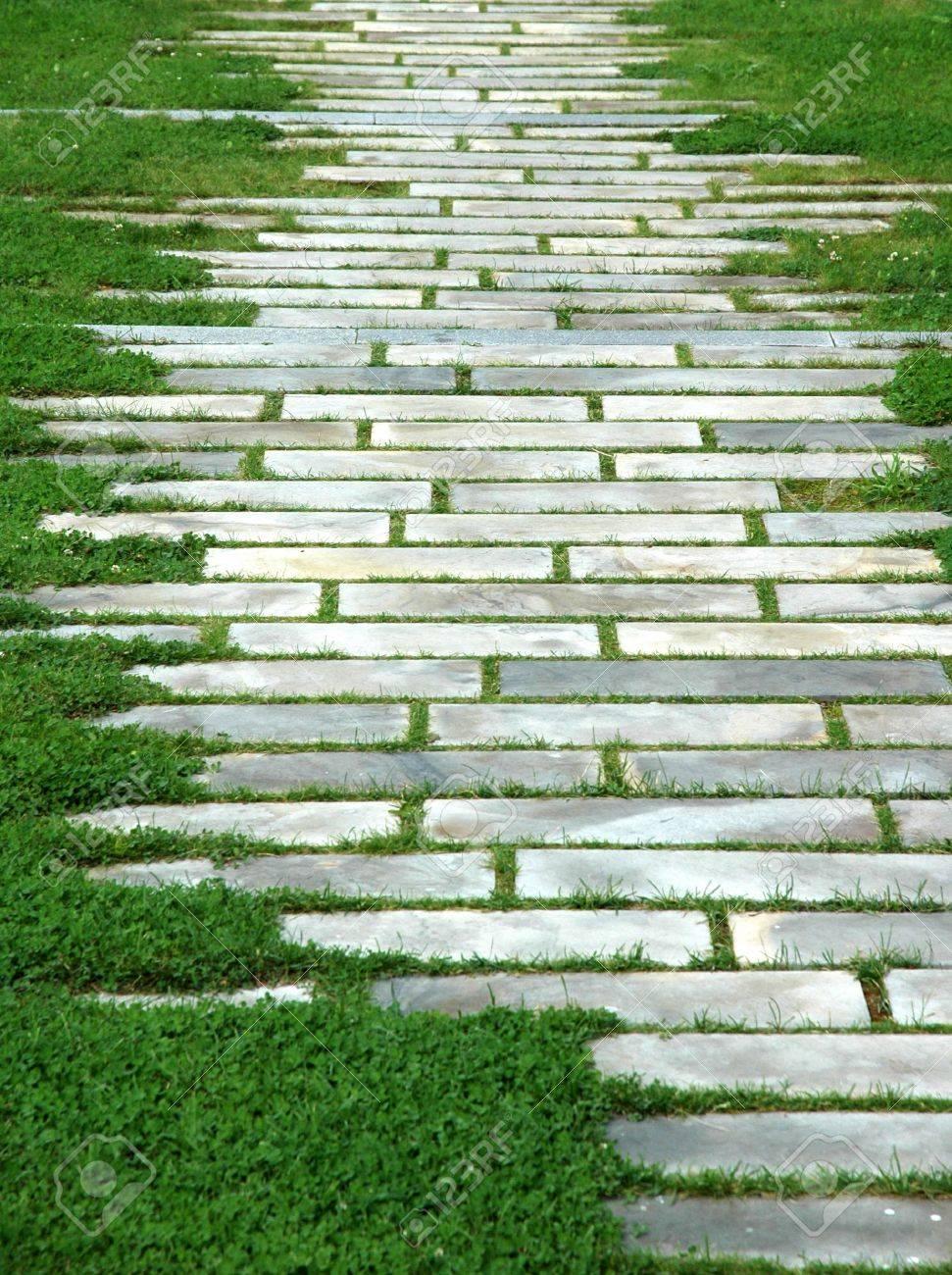 geometric pattern on grass Stock Photo - 5304520