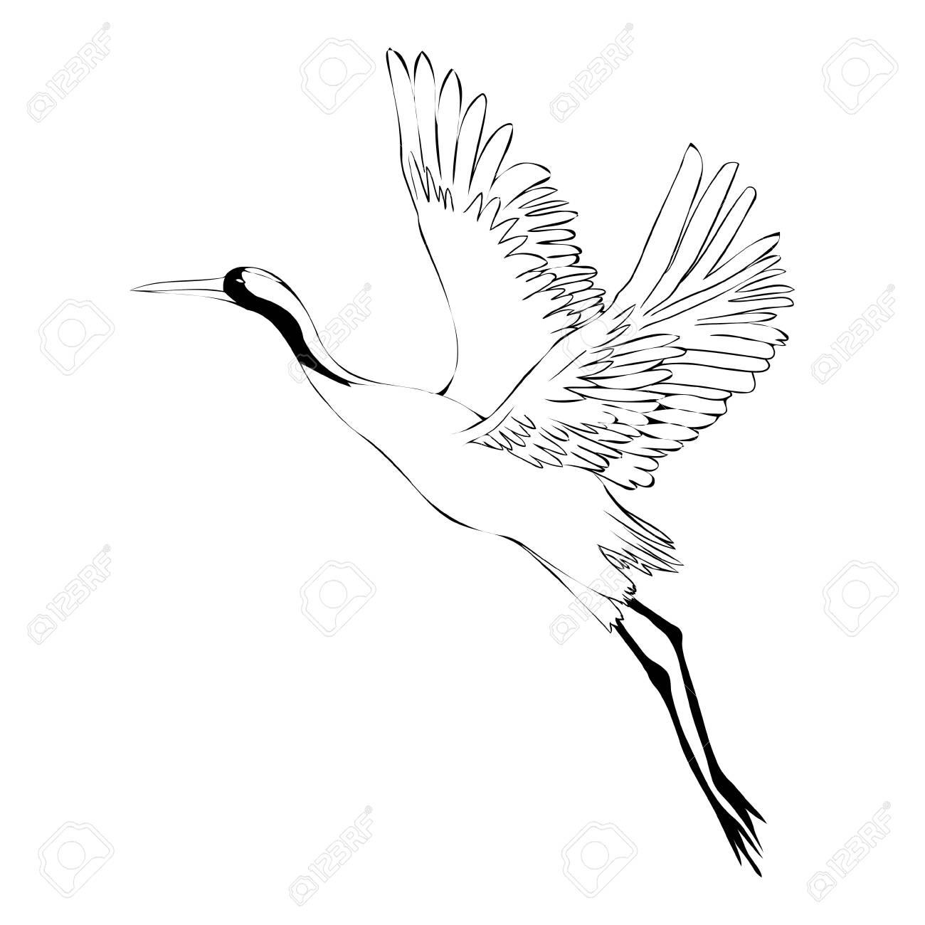 鳥鶴のイラスト。孤立オブジェクト の写真素材・画像素材 Image 93059317.