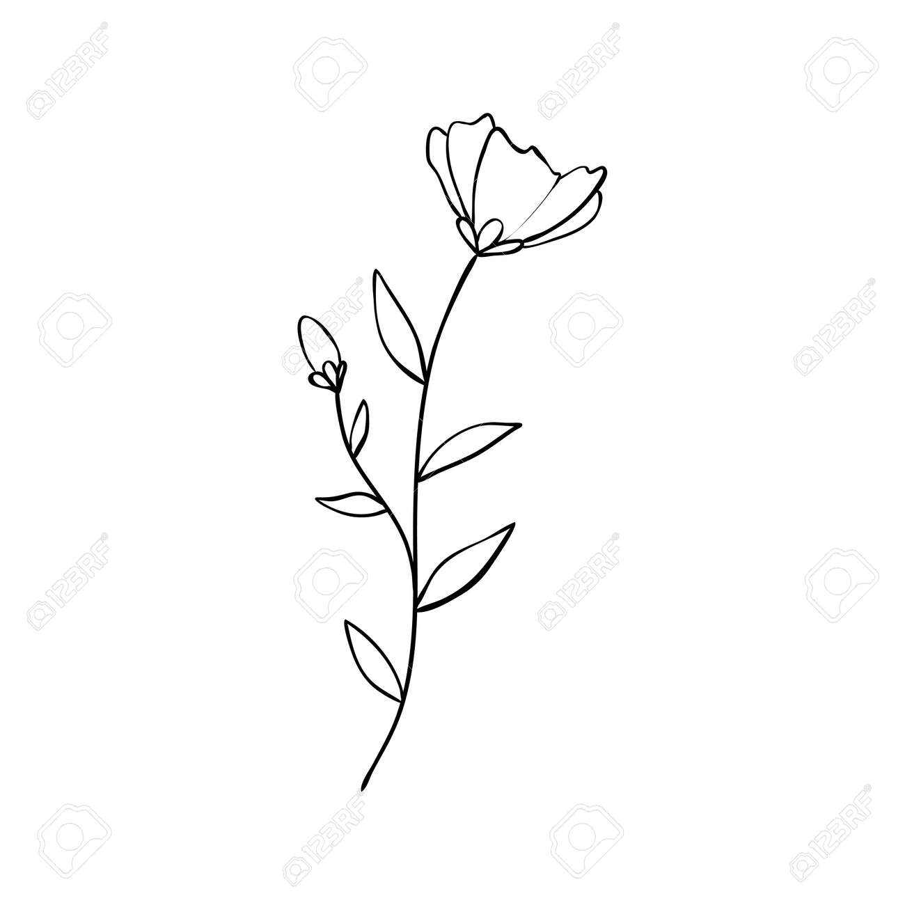 Sketch a leaf branch by hand on an isolated background. Vector, illustration - 168290708