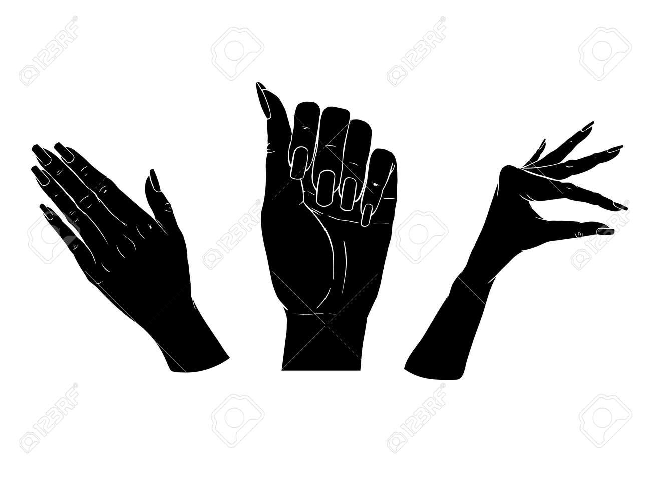 Female black silhouette hands over white background. Set vector illustration - 168290710