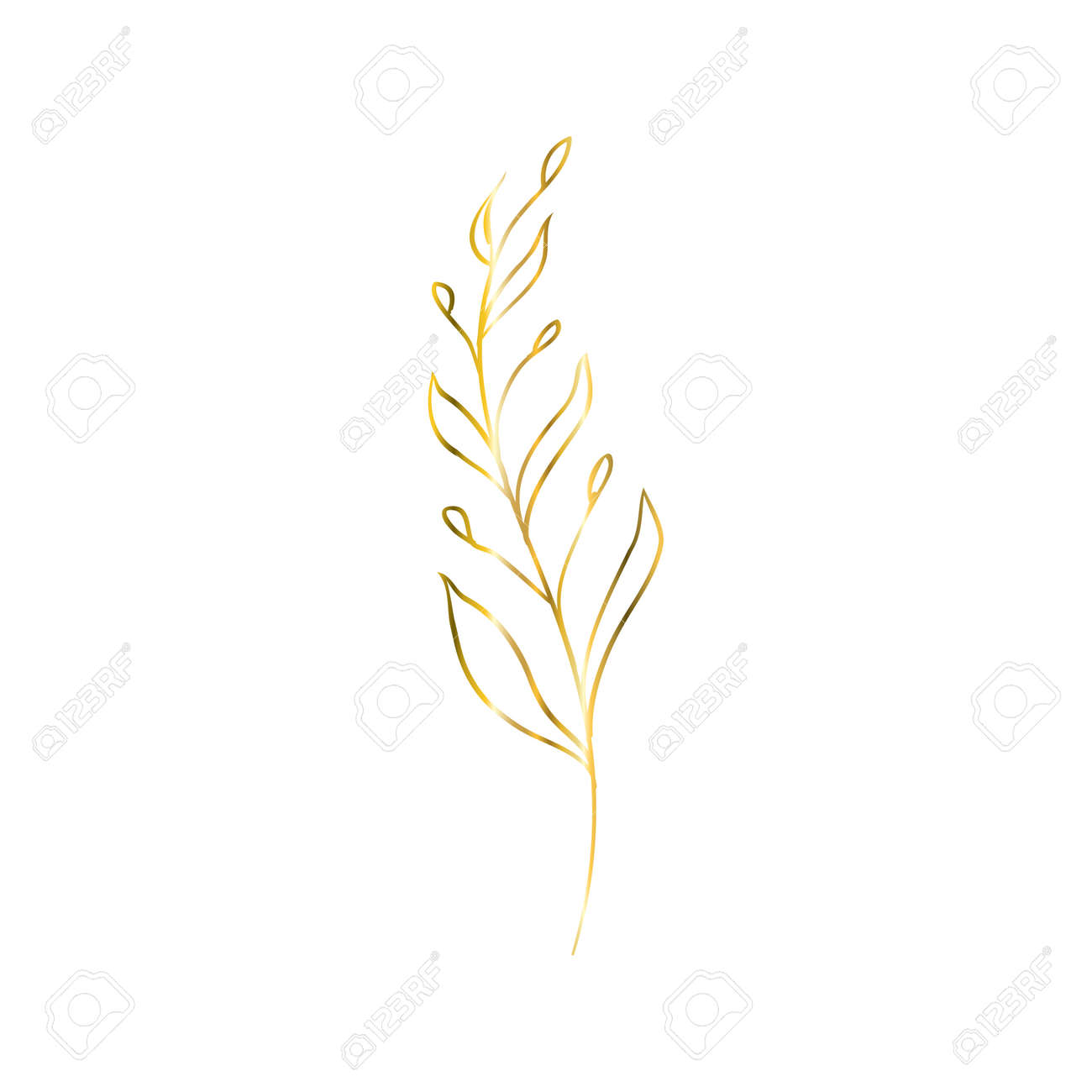 The golden sprig. Vector image with a golden twig. Editable geometric element isolated on white. - 168291132