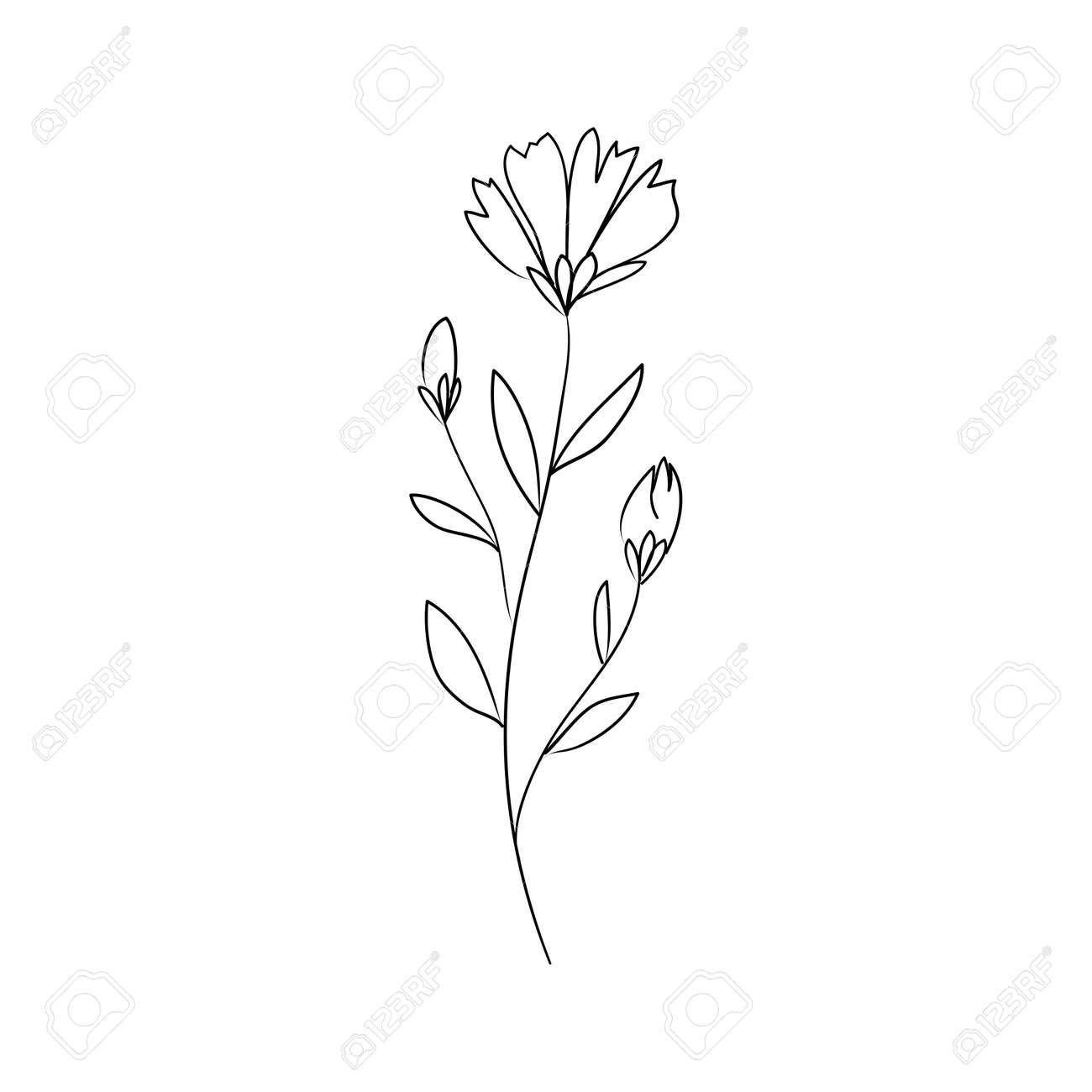 Sketch a leaf branch by hand on an isolated background. Vector, illustration - 168291201