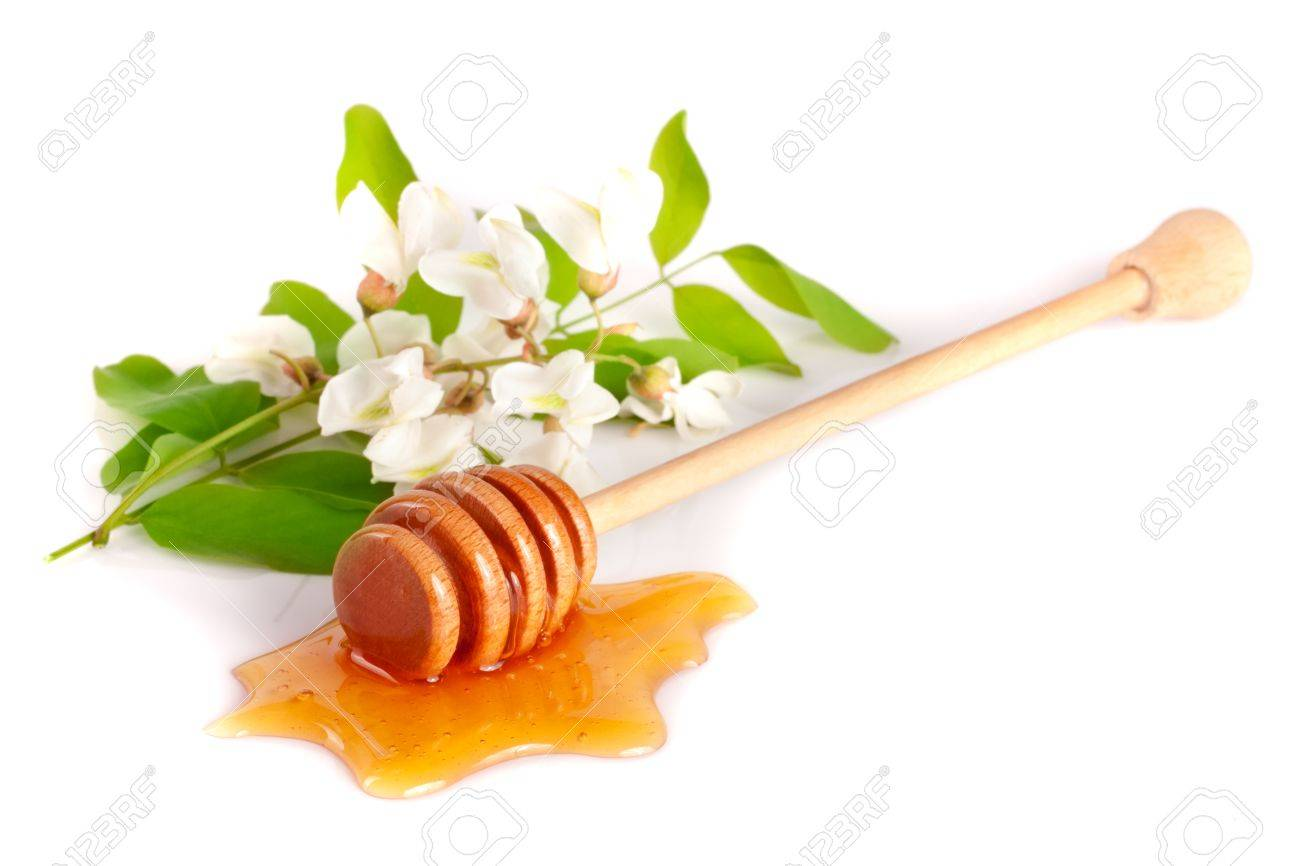 Honey stick with flowing honey and flowers of acacia isolated on white background - 80197322