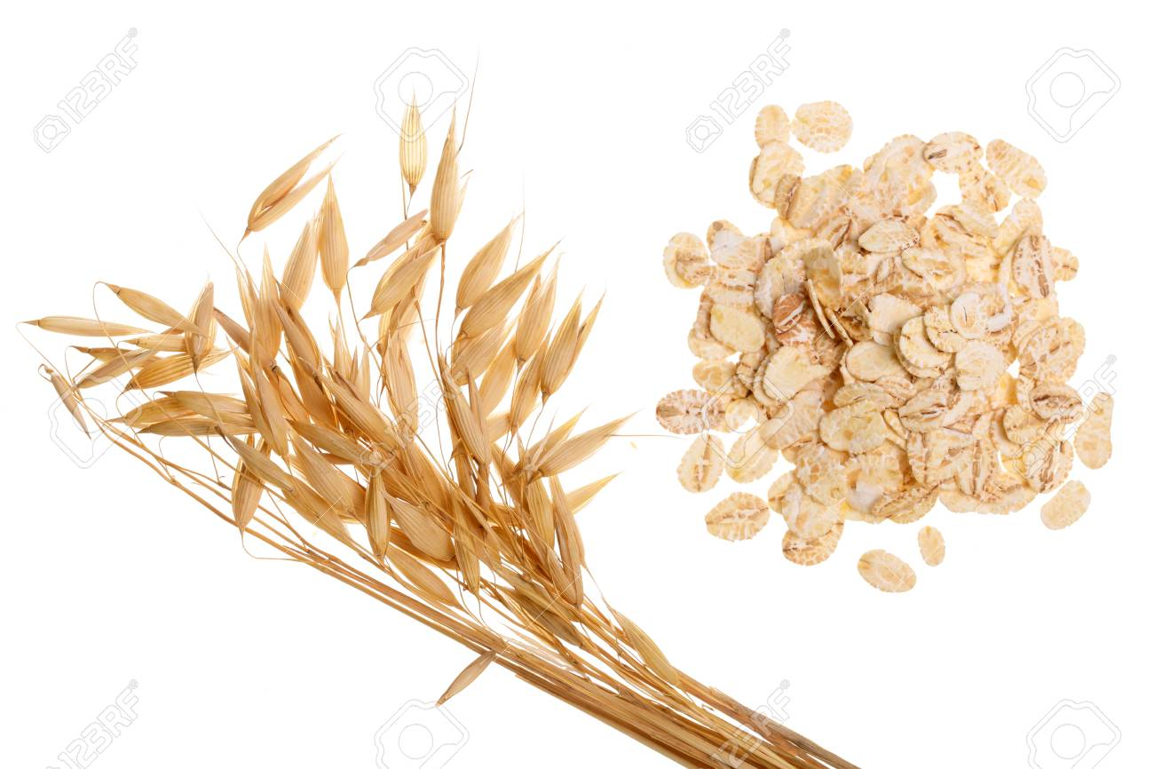 oat spike with oat flakes isolated on white background. Top view. - 96685430