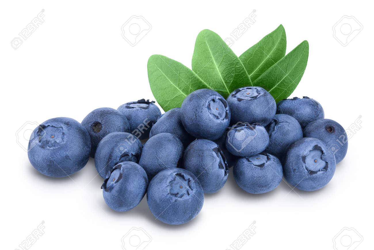fresh blueberry with leaves isolated on white background - 154558924