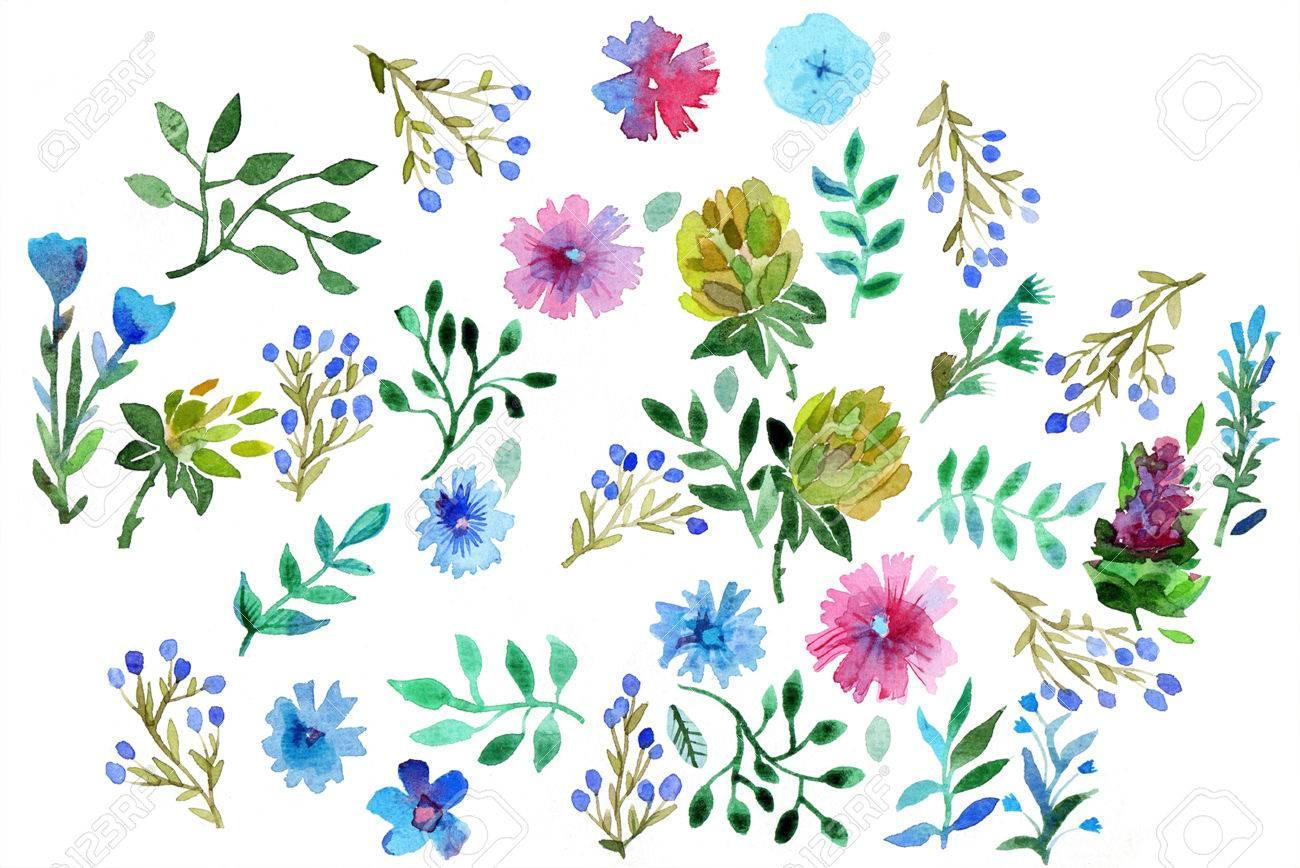 Aquarell Hand Malen Blumen Und Blatter Von Hand Gemacht Isoliert