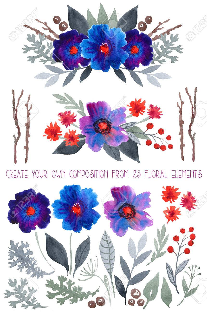 Watercolor Floral Set Colorful Blue And Purple Collection With Leaves Flowersdrawing