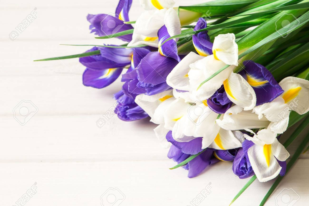 Bouquet of iris flowers on grey wooden table space for text stock bouquet of iris flowers on grey wooden table space for text stock photo 97358724 izmirmasajfo