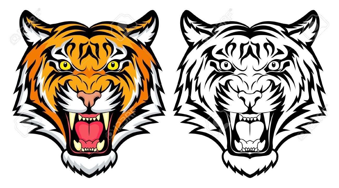 Super Une Tête De Tigre Clip Art Libres De Droits , Vecteurs Et  HD28