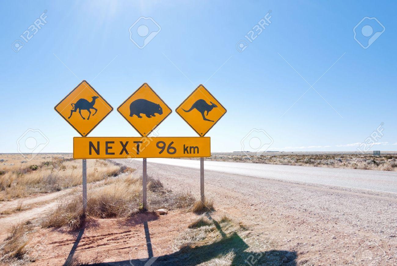 Typical Australian roadsign with Camel, Wombat and Kangaroo at Nullarbor Plain, Australia Stock Photo - 16658461