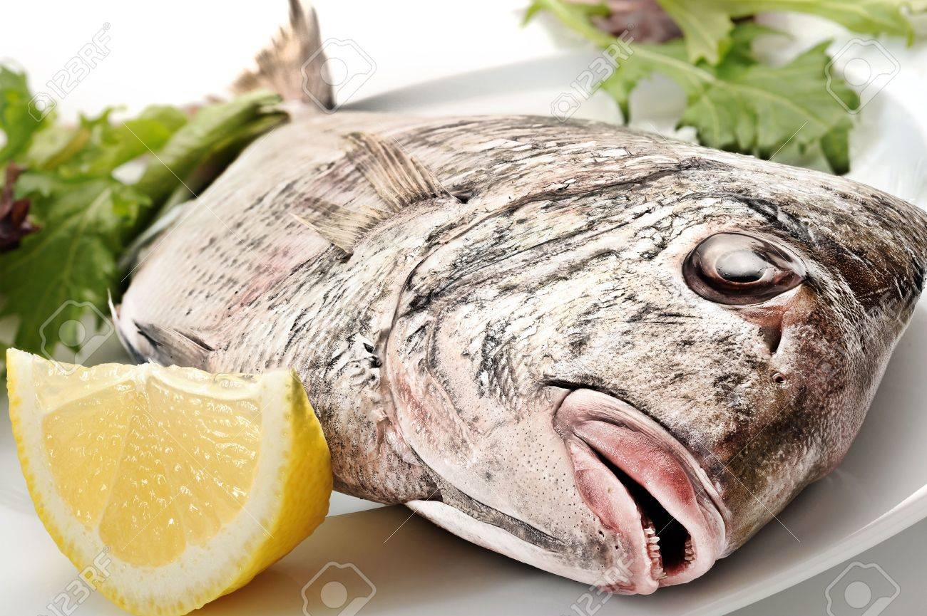 Freshly baked fish with mixed salad and lemon on white plate Stock Photo - 6825146