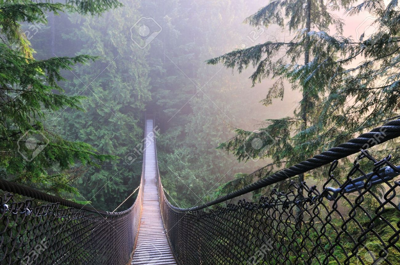 Lynn Canyon Park u0026 Suspension Bridge in Lynn Valley Stock Photo - 11439586 & Lynn Canyon Park u0026 Suspension Bridge In Lynn Valley Stock Photo ...
