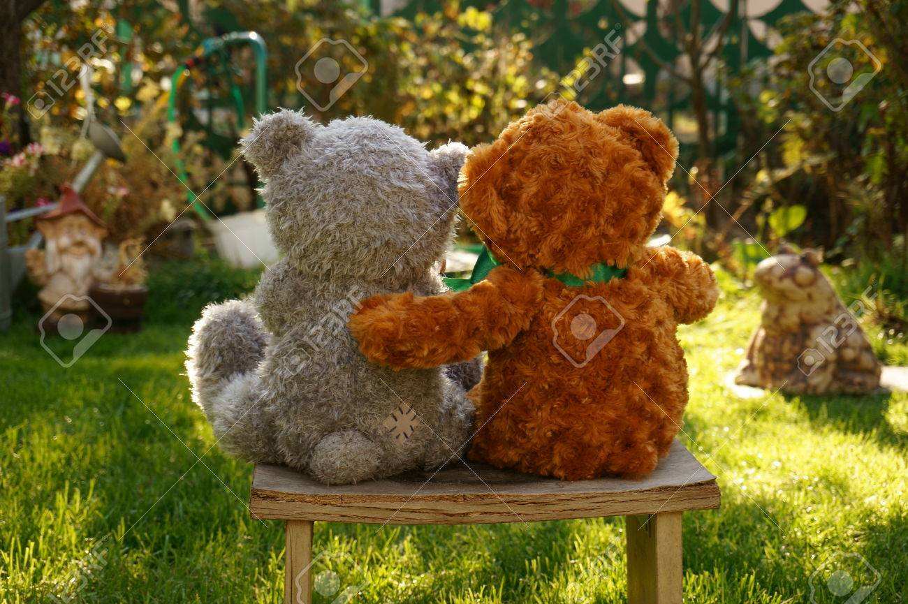 stock photo teddy bears me to you on the bench look at the sunset in the garden - Peluche Me To You